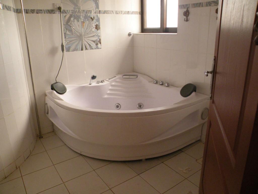 avoir une douche et une baignoire dans sa salle de bain c. Black Bedroom Furniture Sets. Home Design Ideas